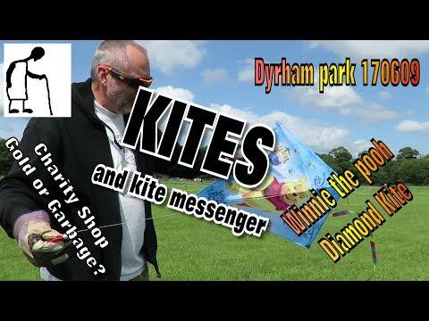 Kites Dyrham park 170609 Winnie The Pooh Diamond Kite and kite messenger