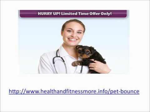 ★ Pet Bounce Review | Pet Joint Pain Relief | Natural Arthritis Relief For Dogs★