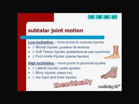 04 Foot Ankle Anatomy   Part 3 Subtalar Joint