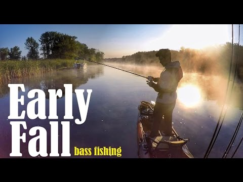 Early Fall Bass Fishing Baits And Techniques