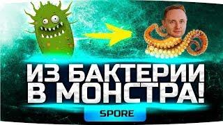 ЛУЧШИЙ СИМУЛЯТОР ЖИЗНИ ● Из Бактерии в Жуткого Монстра! ● SPORE #1