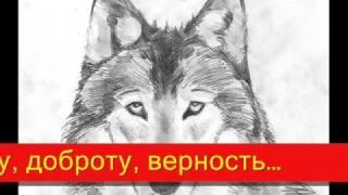 Школа мудрости-притча о двух волках