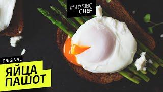 ЯЙЦА ПАШОТ #11 (готовьте яйца под юбкой) Илья ЛАЗЕРСОН 🍝