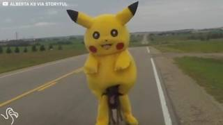 K9 Chases Down Wild Pikachu