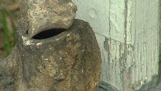 Ancient human skeleton found in backyard