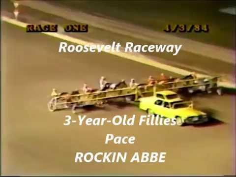 1984 Roosevelt Raceway ROCKIN ABBE 3YO Filly Pace Merrit Dokey