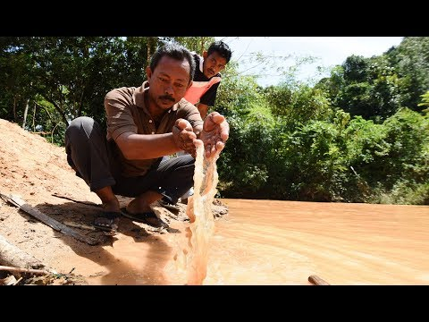 SAM urges Kedah government to stop logging and sand mining activities on Gunung Inas