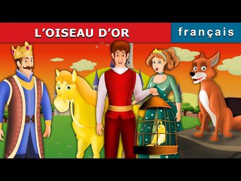 L'OISEAU D'OR | Histoire Pour S'endormir | Histoire Pour Les Petit | Contes De Fées Français