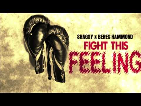 Shaggy Ft Beres Hammond - Fight this Feeling