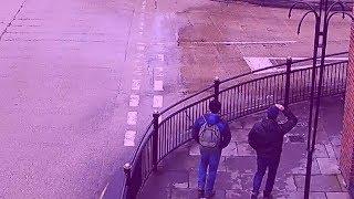 Правда туристов Петрова и Боширова
