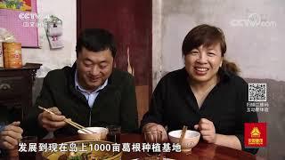 《远方的家》 20191118 长江行(72) 江畔湖边秋收忙| CCTV中文国际