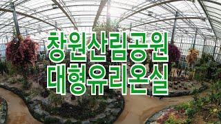 창원산림공원 대형유리온실