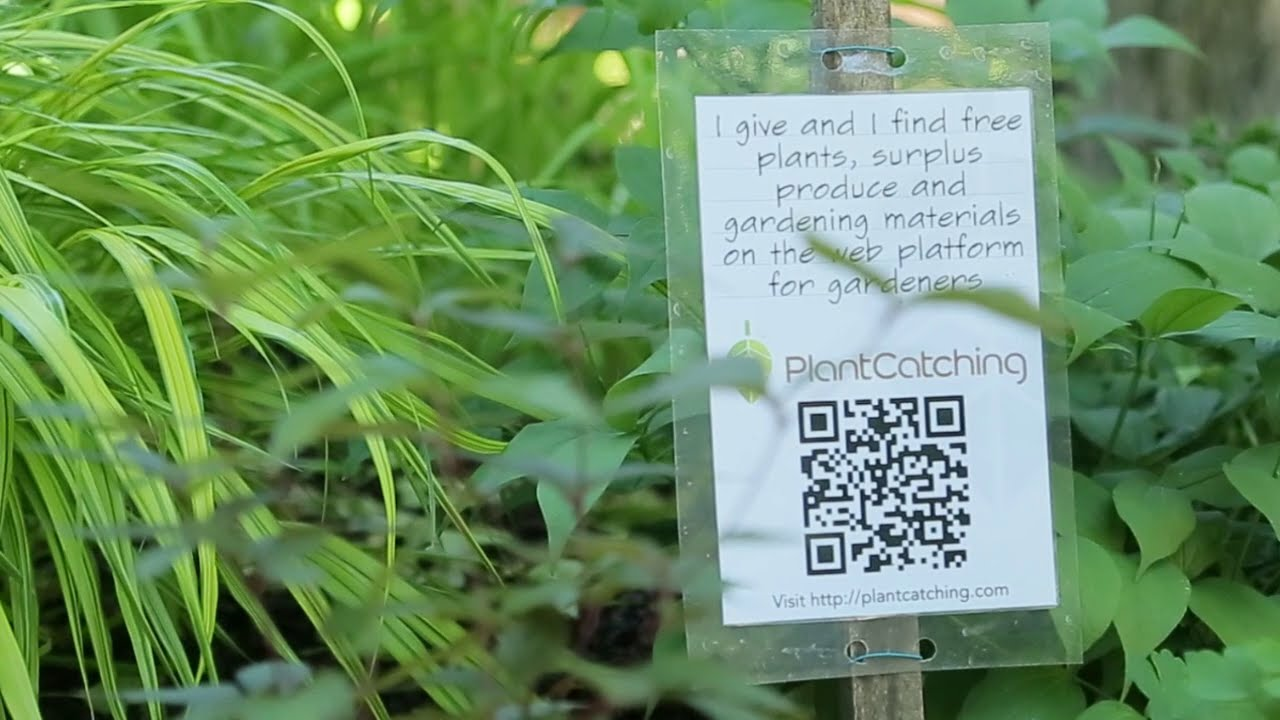 Plantcatching.com, A Common Plant Resource For Gardeners Worldwide