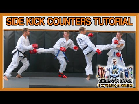 Taekwondo Side Kick Counters (How to Defend and Counter) | Van Roon Tutorial