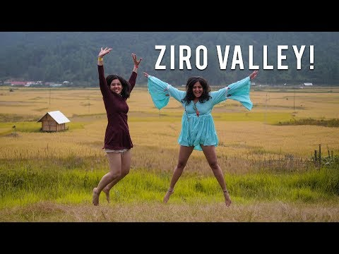 Camping in Northeast India | Ziro Vlog # 2 | Visiting Arunachal Pradesh for Ziro Festival Of Music