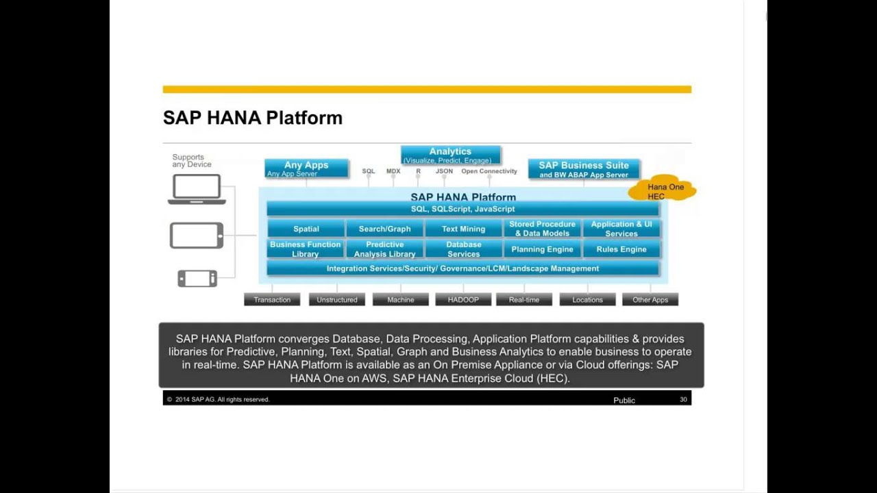 achieve instant insight and infinite scale with sap hana and