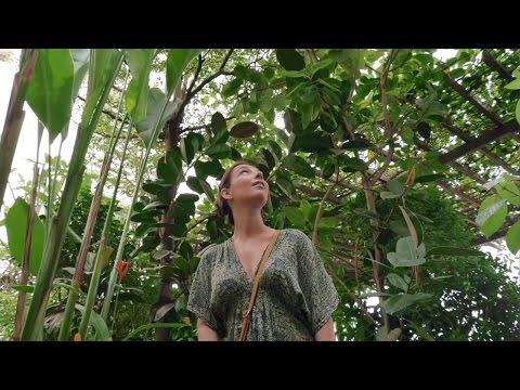 Amadeus powers Travel: Imola, Cultural Purist