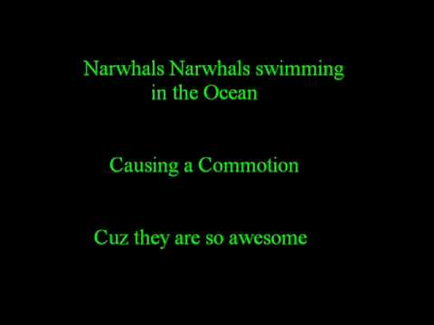 Narwhals + Lyrics