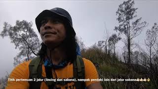 Download Video Kupas Tuntas Jalur Arjuno Via Lawang (Lincing) 2...TAMAT MP3 3GP MP4