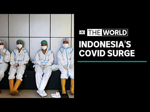 Calls for Indonesia to go into lockdown, as coronavirus infections rise | The World
