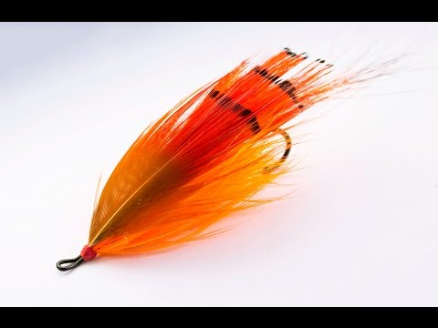 fly tying a General Practitioner