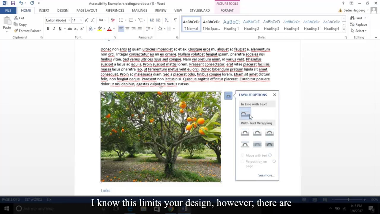 word documents examples
