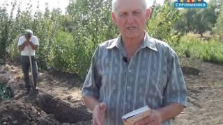 как сделать почву сада плодородной