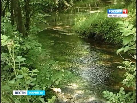Национальный парк «Марий Чодра» отметил 30-летие - Вести Марий Эл