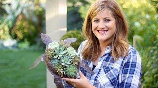 CUTE Turtle Succulent Planter!!