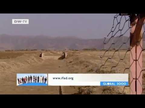 GLOBAL 3000 | Eritrea: Farm Land for Women