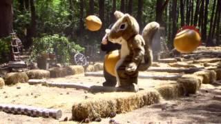 Egern får kastanje i skridtet