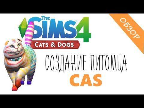 СИМС 4  ПИТОМЦЫ : создание питомцев | обзор | СИМС 4 КОШКИ И СОБАКИ CAS ( SIMS 4 CATS and DOGS )