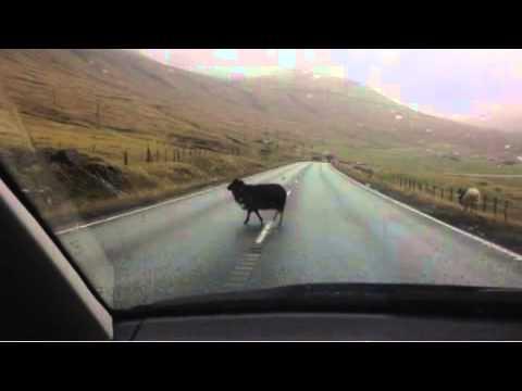 Faroe Islands 2014.