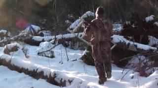 Уникальная съемка берлоги. Медведица с медвежонком.