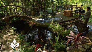 Serene Pond Backyard |Barbara and David Hale|Central Texas Gardener