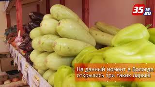 На улицы Вологды возвращаются ларьки
