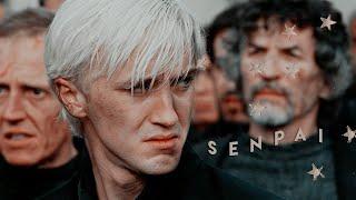 Draco Malfoy [Senpai]