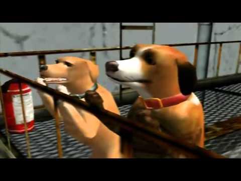 Dog S Life Minniwahwah Cafe