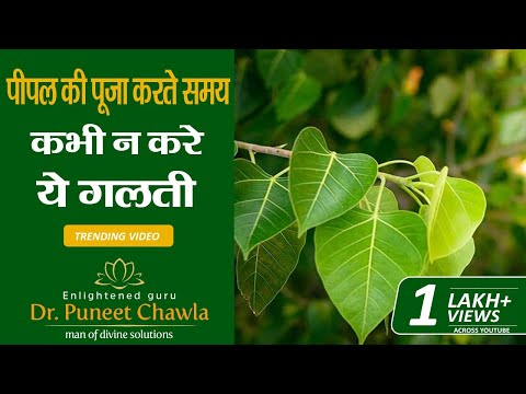 Peepal Tree & Good Luck | Vastu Tips by Enlightened Life Guru Dr. Puneet Chawla