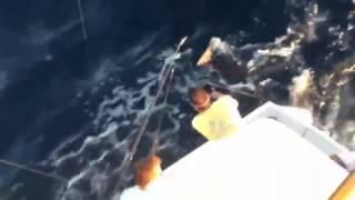 Scotty San Carlos Mexico catching a Striped Marlin