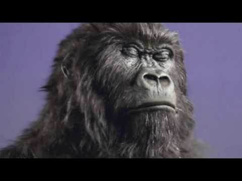 cadbury gorilla ad analysis When cadbury launched 'gorilla' in 2007 the brand was suffering after a  view more on these topicsanalysis advertising 40 years of.