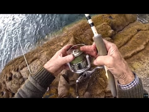 Shore Fishing With Earthworms - Tackle Tips