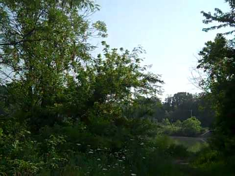 Twin Lakes, Shawnee Hills
