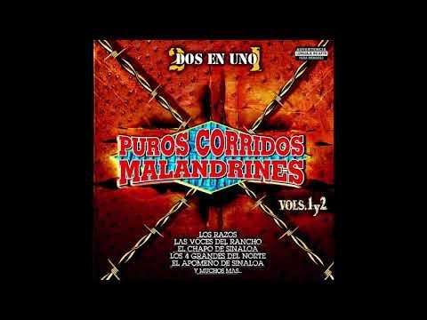 Puros Corridos Malandrines Vol's.1 y 2 (Disco Completo)