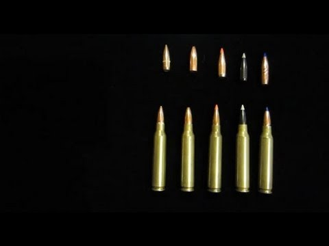 Different Type of Bullets—Explanation and Information.