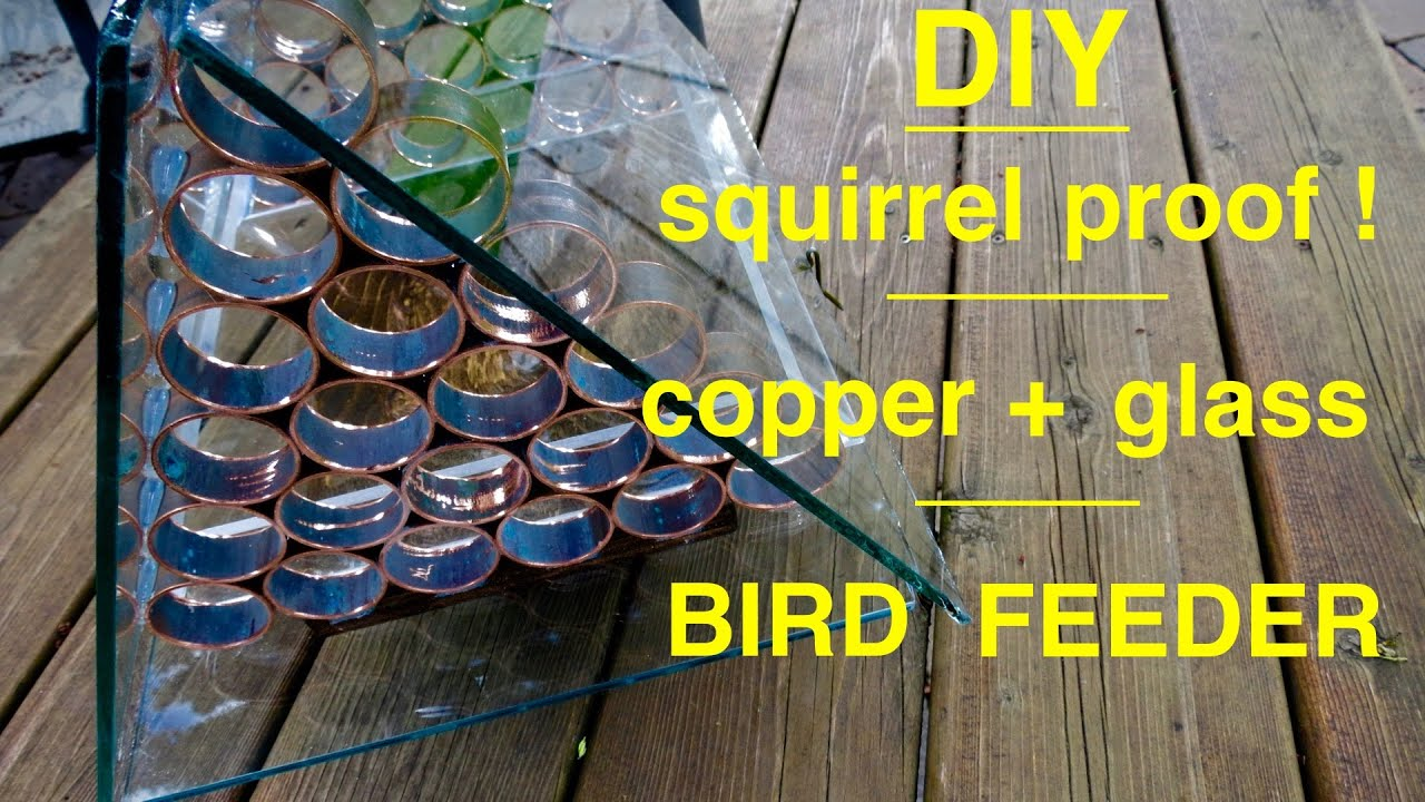 keep out youtube off keeping bird fruit trees to feeder of how feeders squirrels