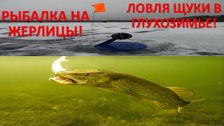 Жерлицы Зимняя рыбалка на щуку Разведка по щучьим местам