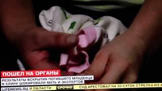 Младенцы в Клину идут на органы