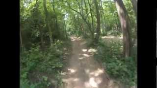 Enon OH - 2- Sportax 250ex & TTR 250 Wooded Trail Riding