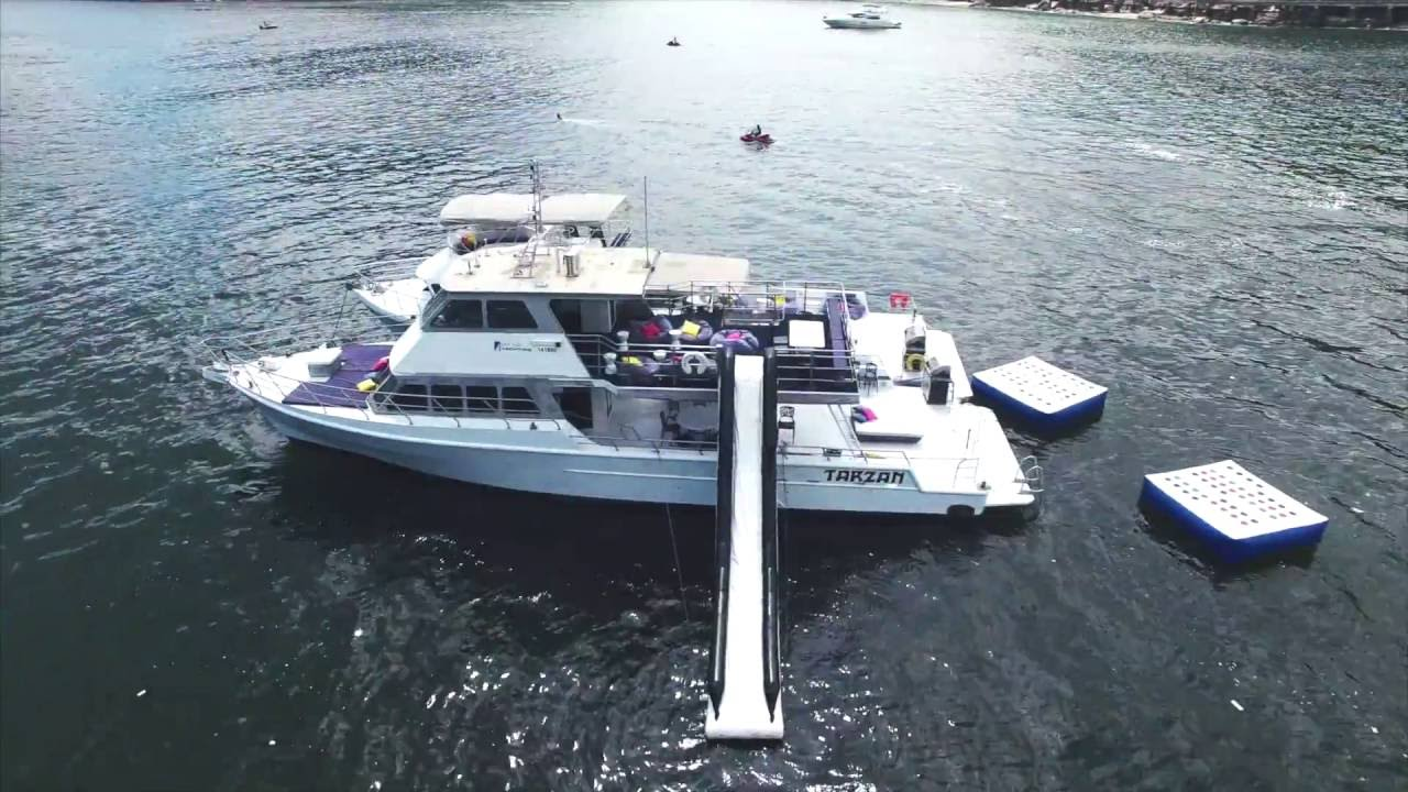 Introducing Hong Kong Yachting